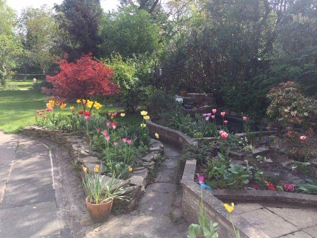 Photo of Maurice's garden